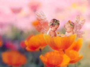 bimbi gnomi fiore