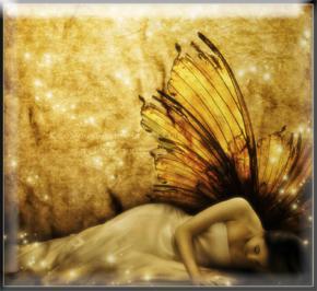 donnafarfalla
